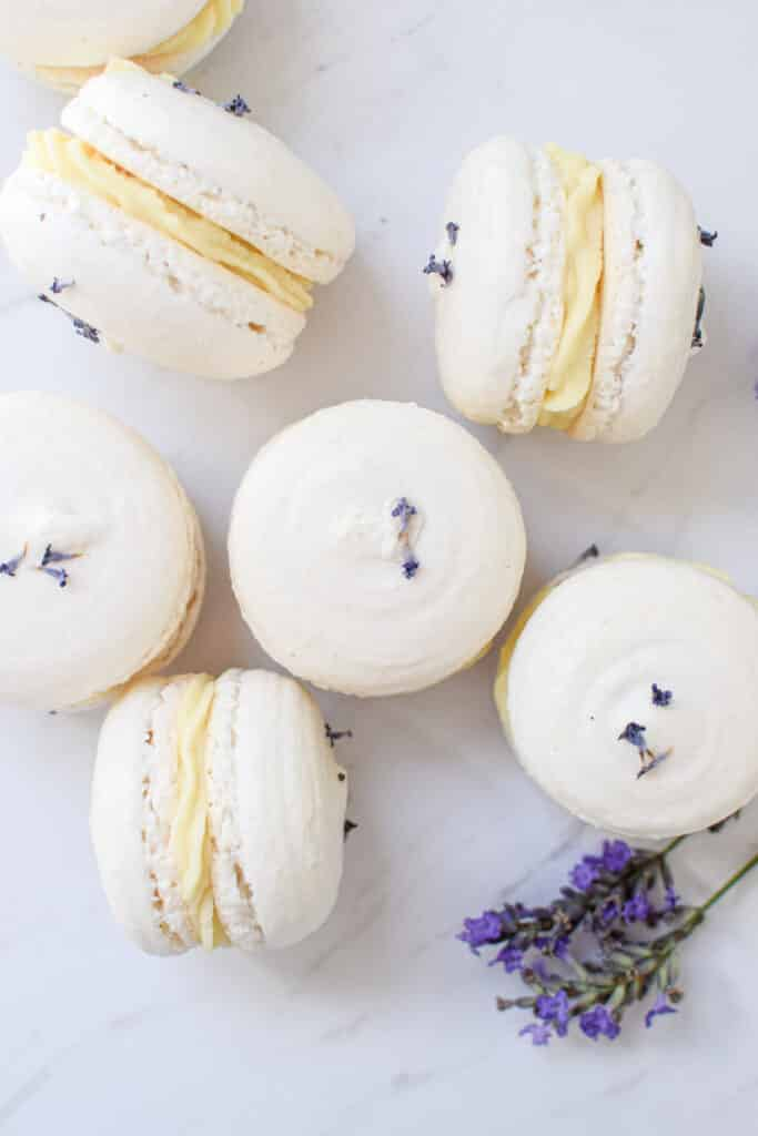 7 white macarons on a white bench with a yellow ganache in the middle.