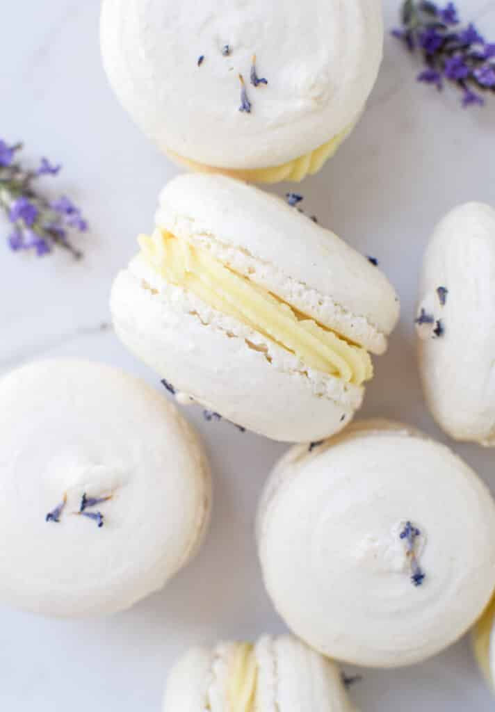 6 white macarons with a yellow ganache in the middle. lavender flowers in the background